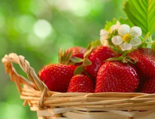Strawberry Desserts