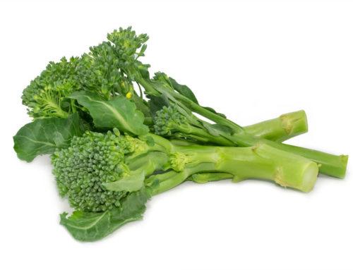 A Well Balanced Diet & Vegetables