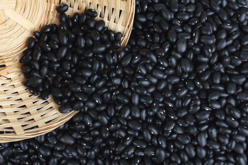 healthy protein in black beans
