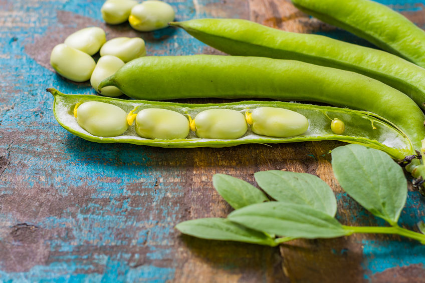 nutrition in lima beans